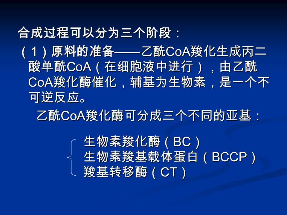 合成过程可以分为三个阶段: (1)原料的准备——乙酰CoA羧化生成丙二酸单酰CoA(在细胞液中进行),由乙酰CoA羧化酶催化,辅基为生物素,是一个不可逆反应。 乙酰CoA羧化酶可分成三个不同的亚基: