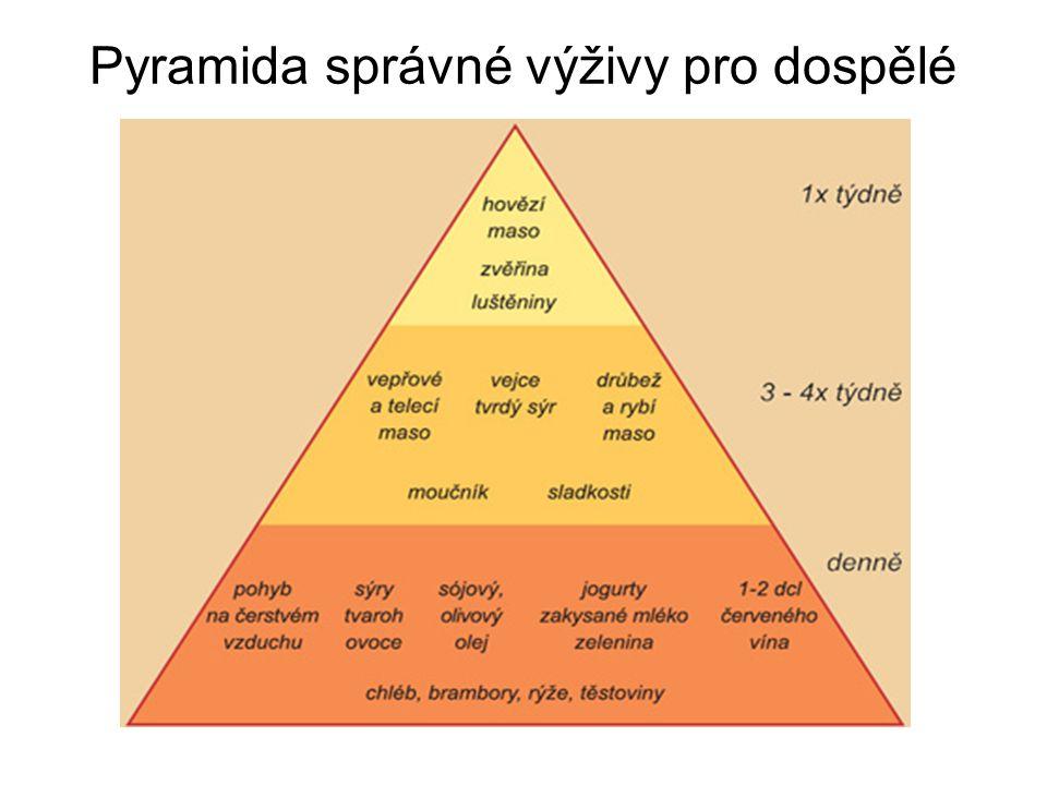 Pyramida správné výživy pro dospělé