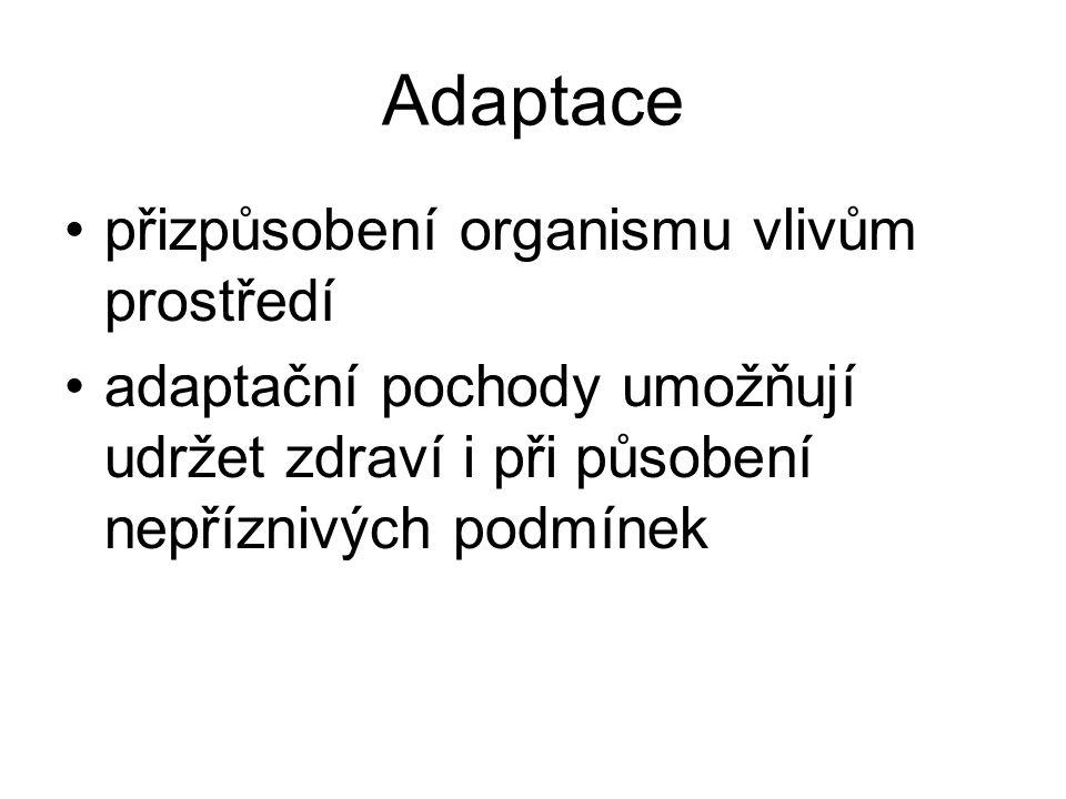 Adaptace přizpůsobení organismu vlivům prostředí