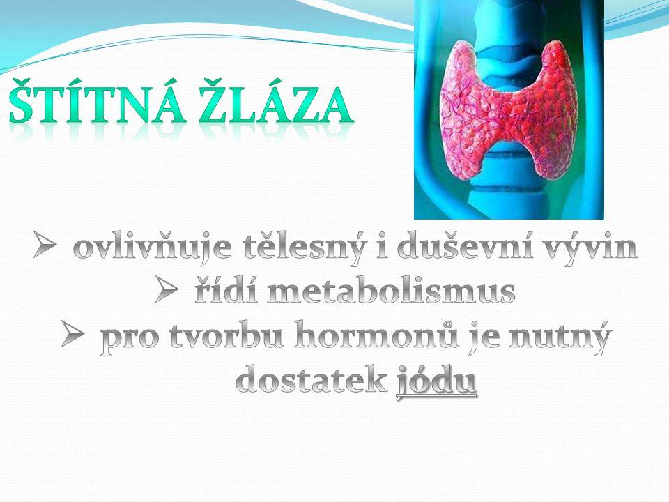 Štítná žláza ovlivňuje tělesný i duševní vývin řídí metabolismus