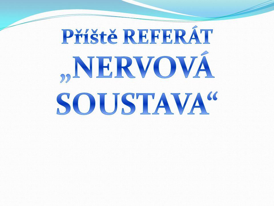 """Příště REFERÁT """"NERVOVÁ SOUSTAVA"""