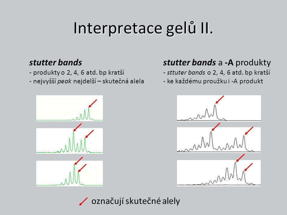 Interpretace gelů II. stutter bands - produkty o 2, 4, 6 atd. bp kratší - nejvyšší peak nejdelší – skutečná alela.