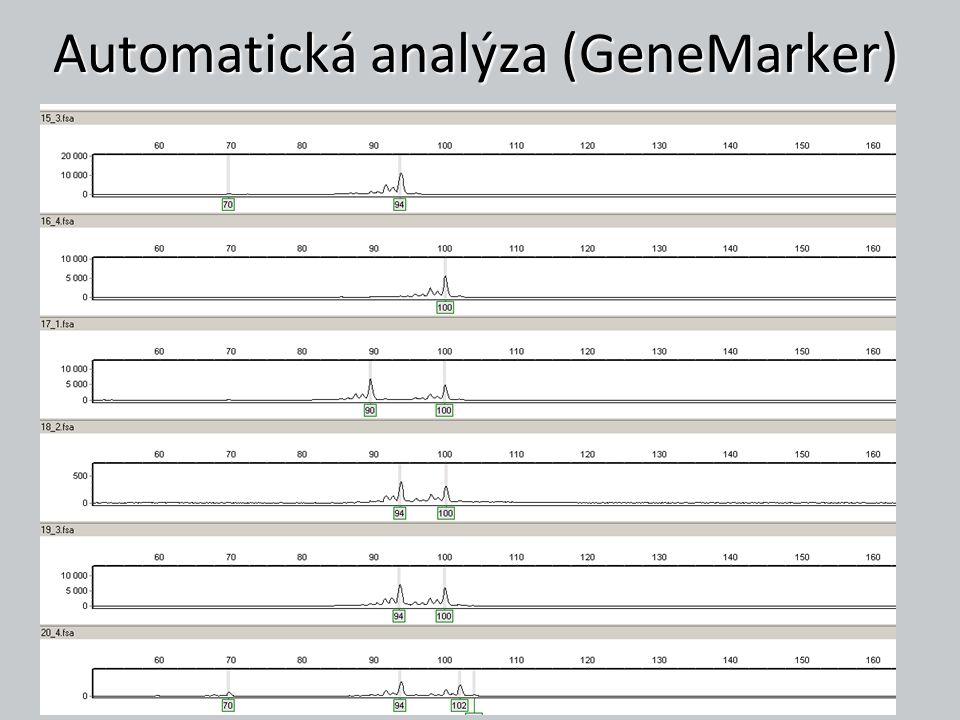 Automatická analýza (GeneMarker)