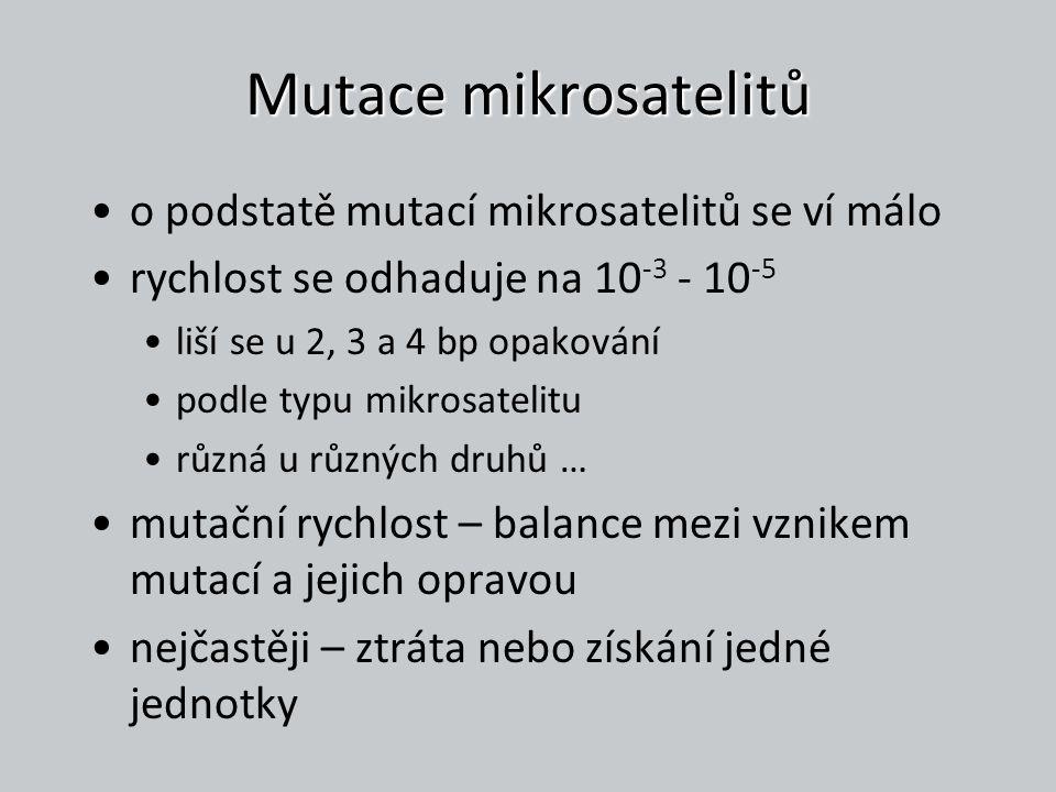 Mutace mikrosatelitů o podstatě mutací mikrosatelitů se ví málo