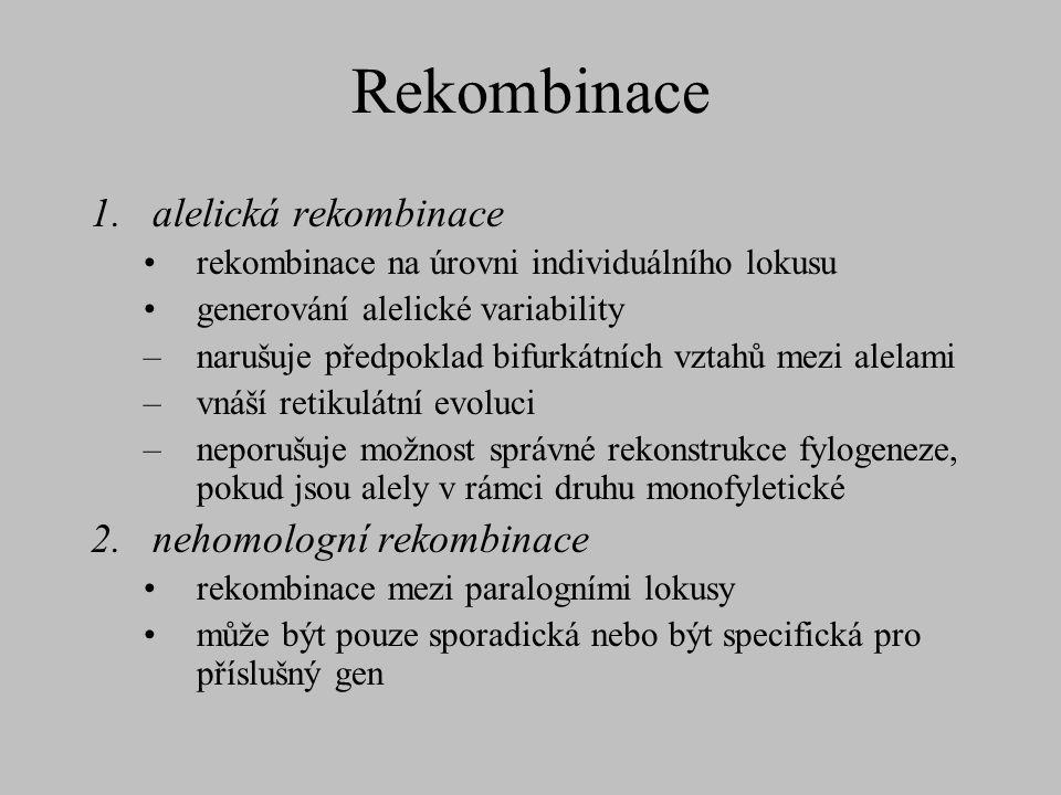 Rekombinace alelická rekombinace nehomologní rekombinace