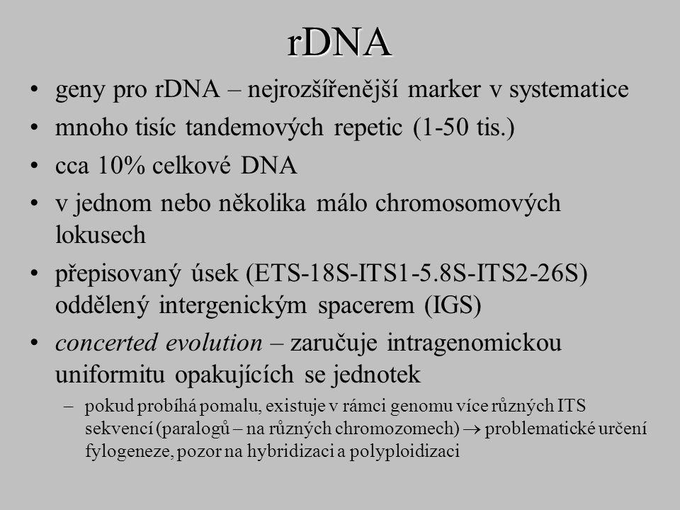 rDNA geny pro rDNA – nejrozšířenější marker v systematice