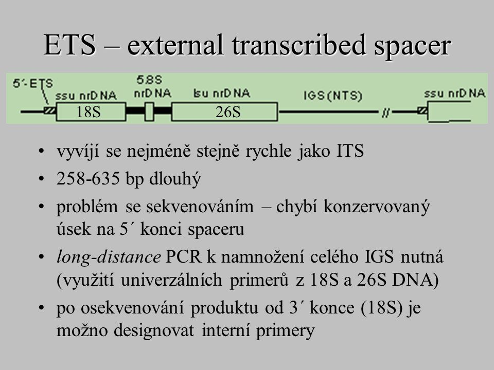 ETS – external transcribed spacer