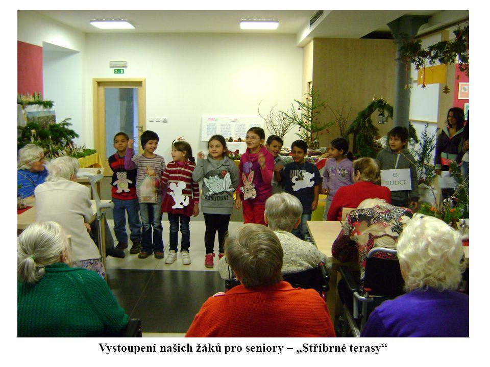 """Vystoupení našich žáků pro seniory – """"Stříbrné terasy"""