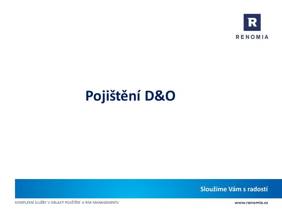 Pojištění D&O