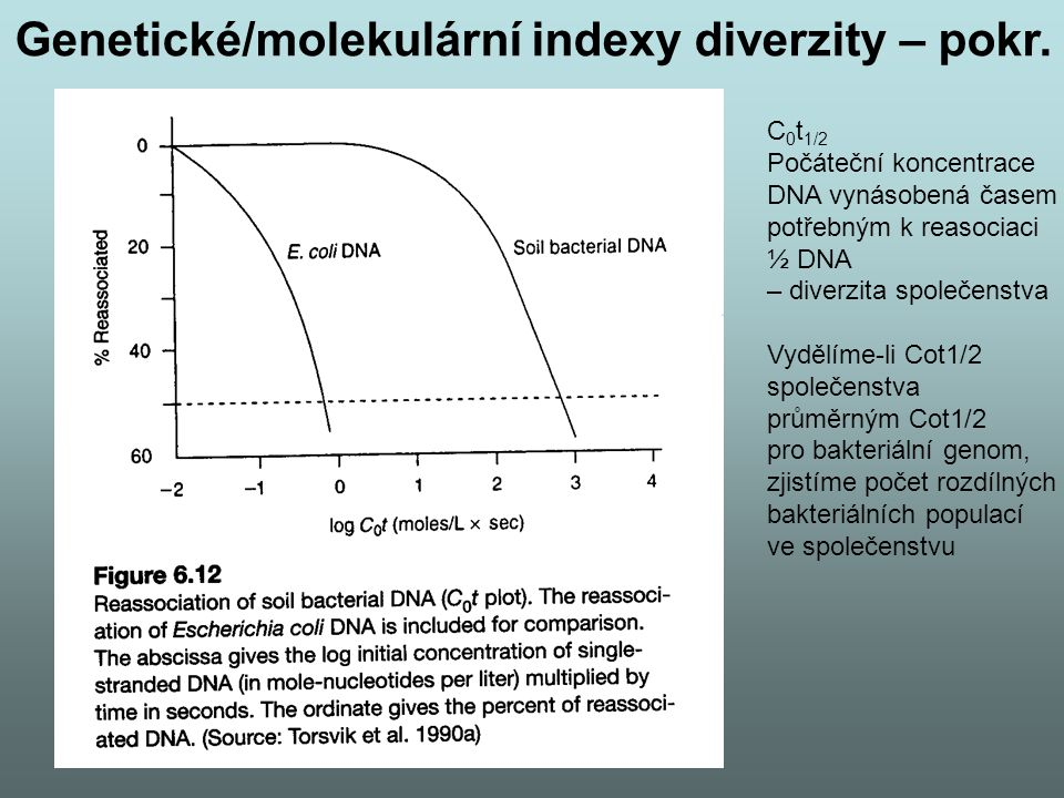 Genetické/molekulární indexy diverzity – pokr.