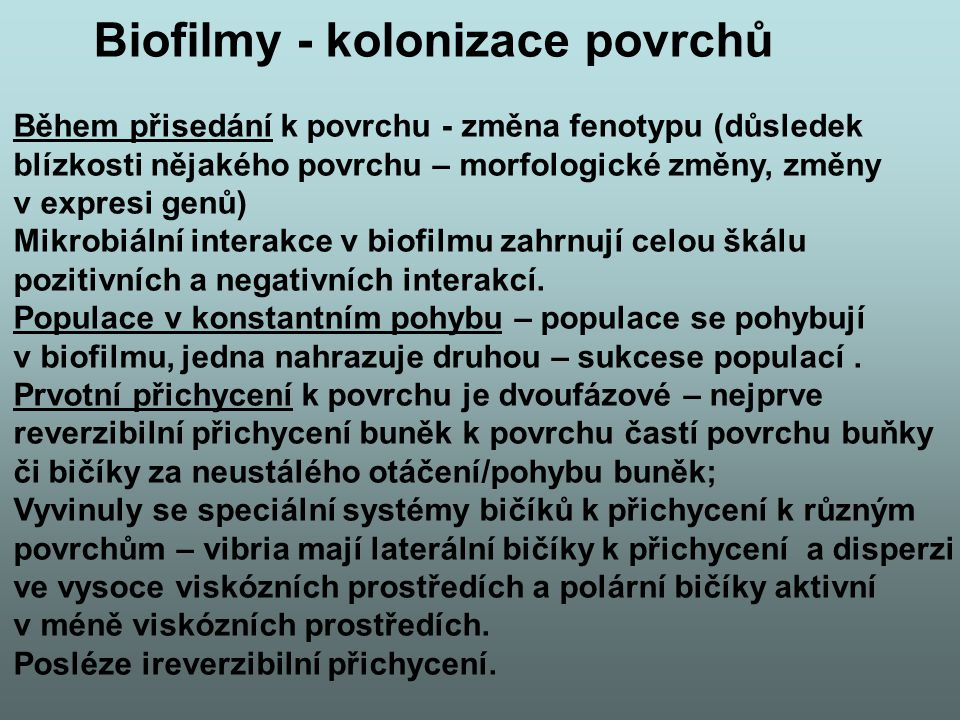 Biofilmy - kolonizace povrchů
