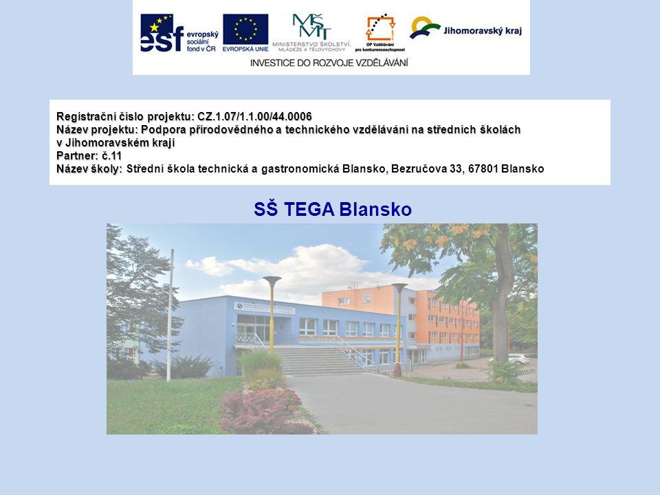 Registrační číslo projektu: CZ. 1. 07/1. 1. 00/44