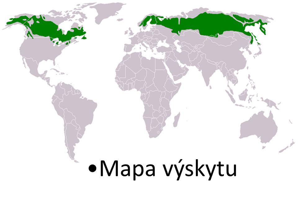•Mapa výskytu
