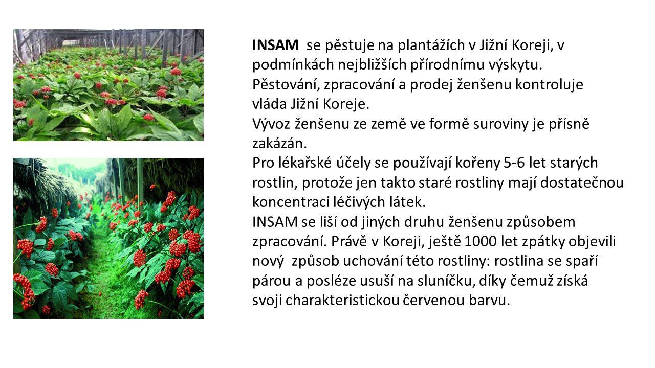 INSAM se pěstuje na plantážích v Jižní Koreji, v