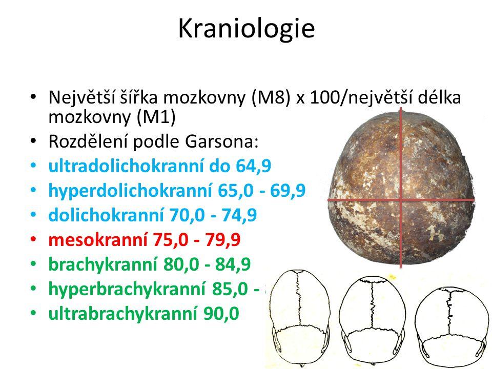 Kraniologie Největší šířka mozkovny (M8) x 100/největší délka mozkovny (M1) Rozdělení podle Garsona: