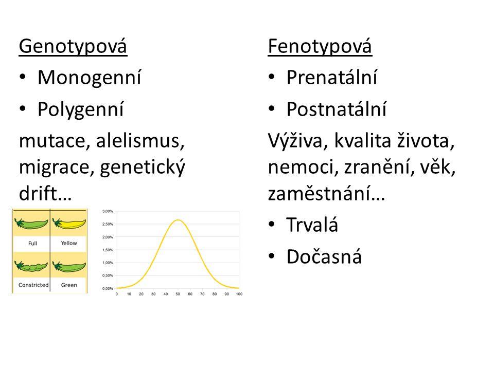 Genotypová Monogenní. Polygenní. mutace, alelismus, migrace, genetický drift… Fenotypová. Prenatální.