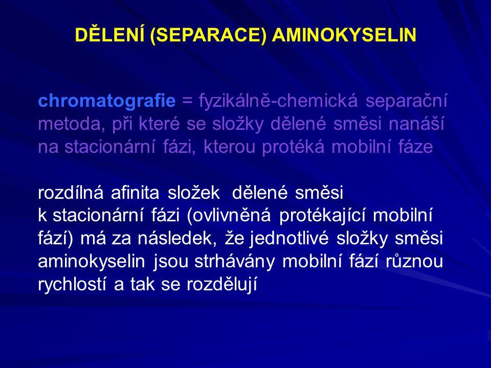 DĚLENÍ (SEPARACE) AMINOKYSELIN