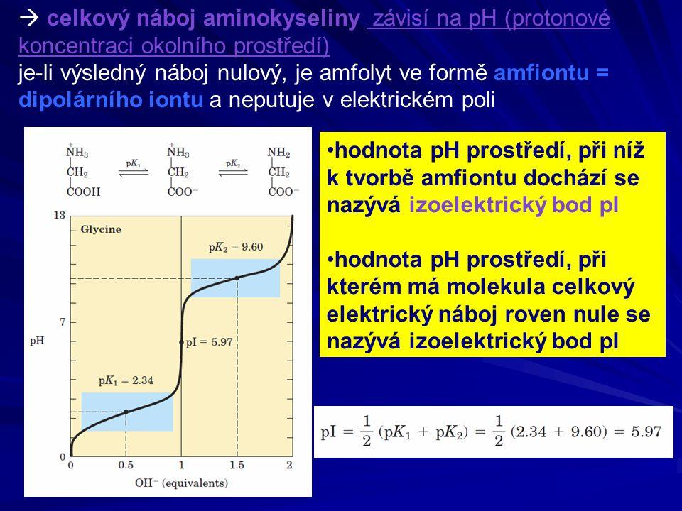  celkový náboj aminokyseliny závisí na pH (protonové koncentraci okolního prostředí)