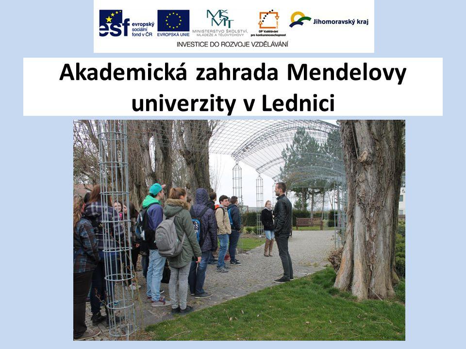 Akademická zahrada Mendelovy univerzity v Lednici