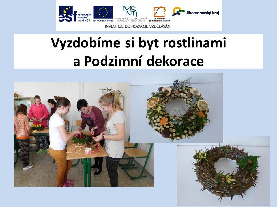Vyzdobíme si byt rostlinami a Podzimní dekorace
