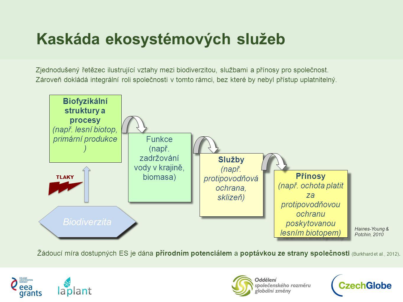 Biofyzikální struktury a procesy