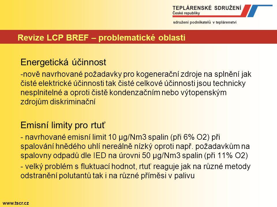 Revize LCP BREF – problematické oblasti