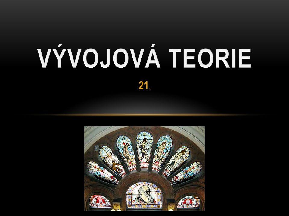 VÝVOJOVÁ TEORIE 21.