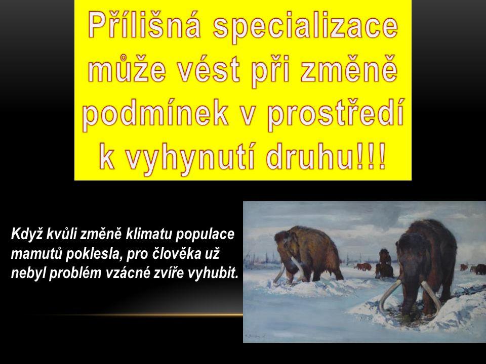 Přílišná specializace může vést při změně podmínek v prostředí k vyhynutí druhu!!!