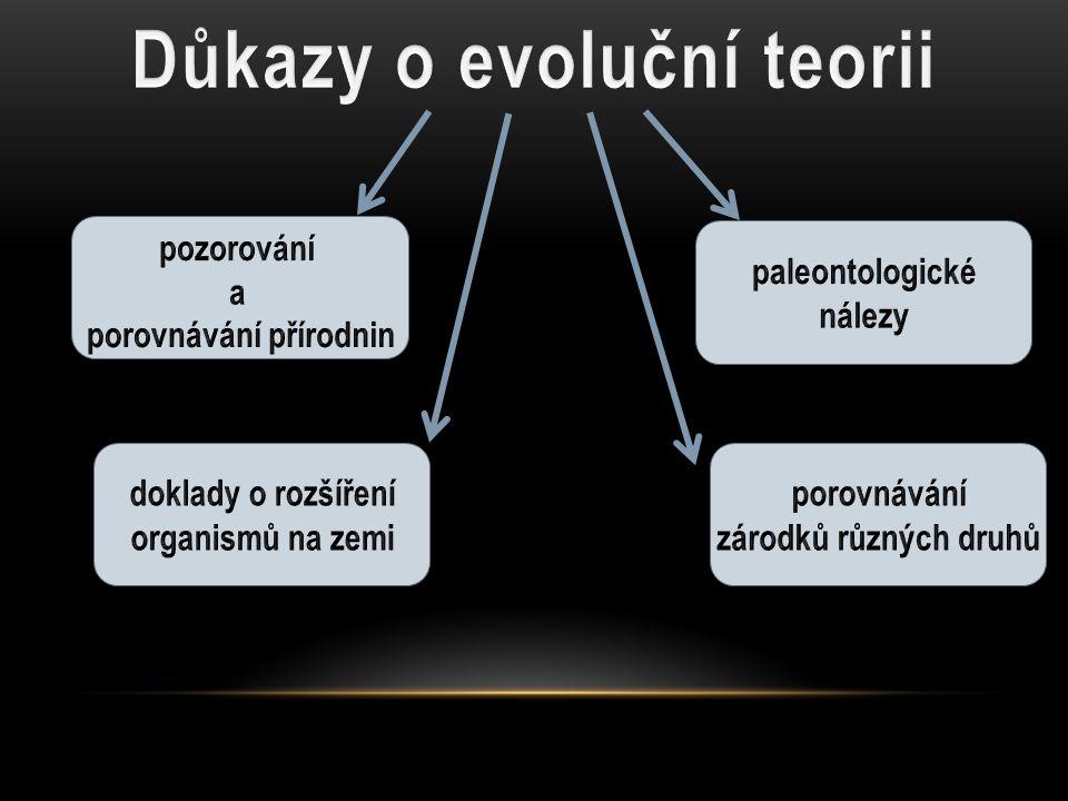 Důkazy o evoluční teorii