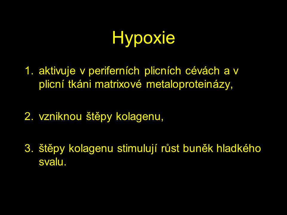 Hypoxie aktivuje v periferních plicních cévách a v plicní tkáni matrixové metaloproteinázy, vzniknou štěpy kolagenu,