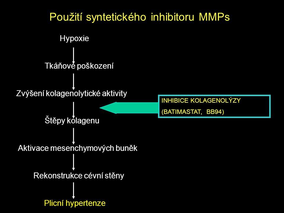 Použití syntetického inhibitoru MMPs