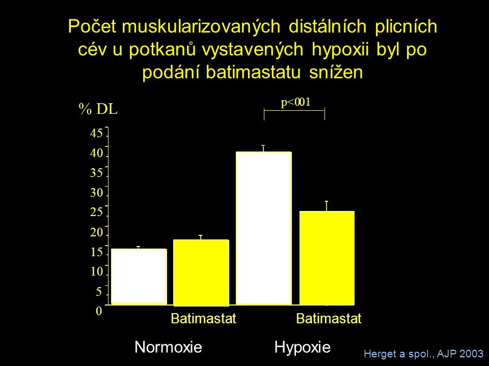 Počet muskularizovaných distálních plicních cév u potkanů vystavených hypoxii byl po podání batimastatu snížen