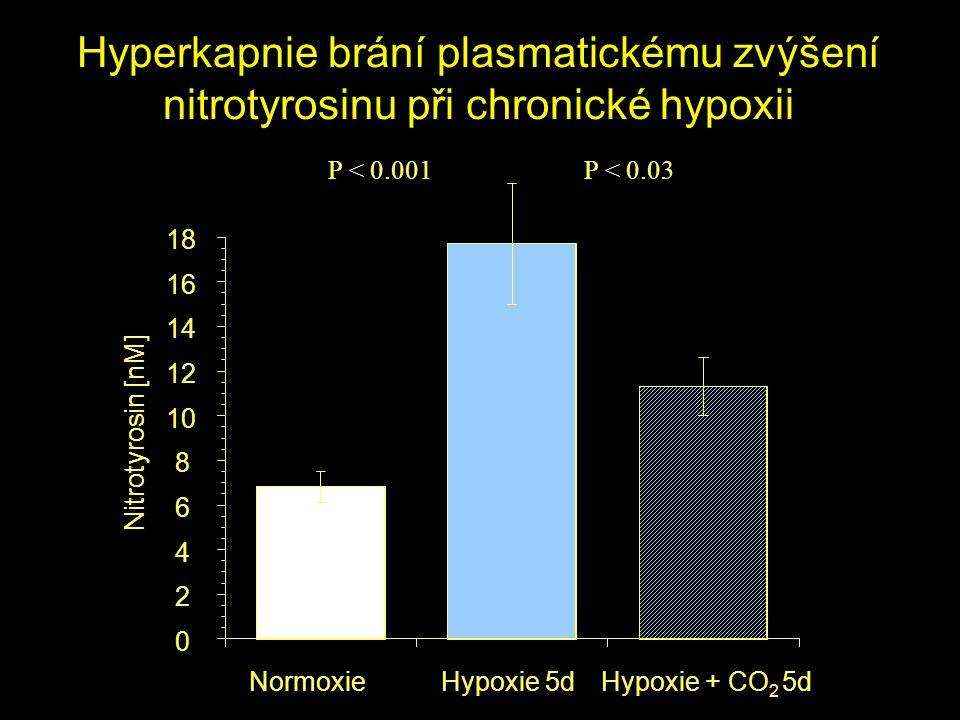 Hyperkapnie brání plasmatickému zvýšení nitrotyrosinu při chronické hypoxii