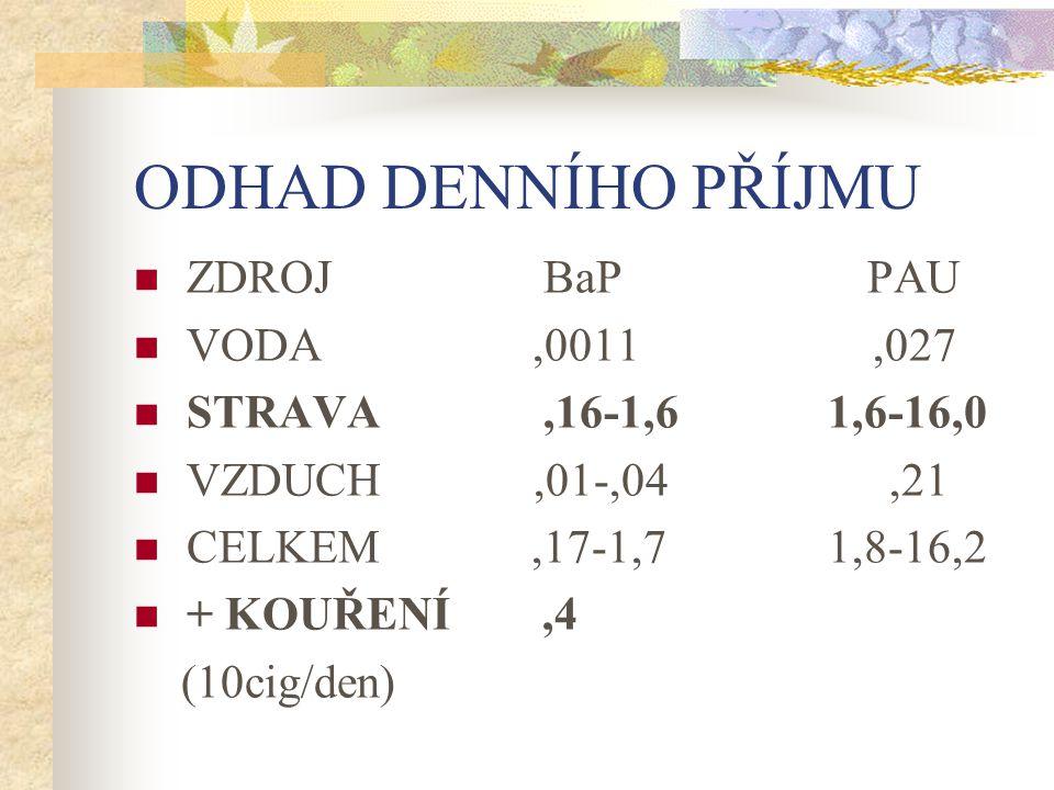ODHAD DENNÍHO PŘÍJMU ZDROJ BaP PAU VODA ,0011 ,027
