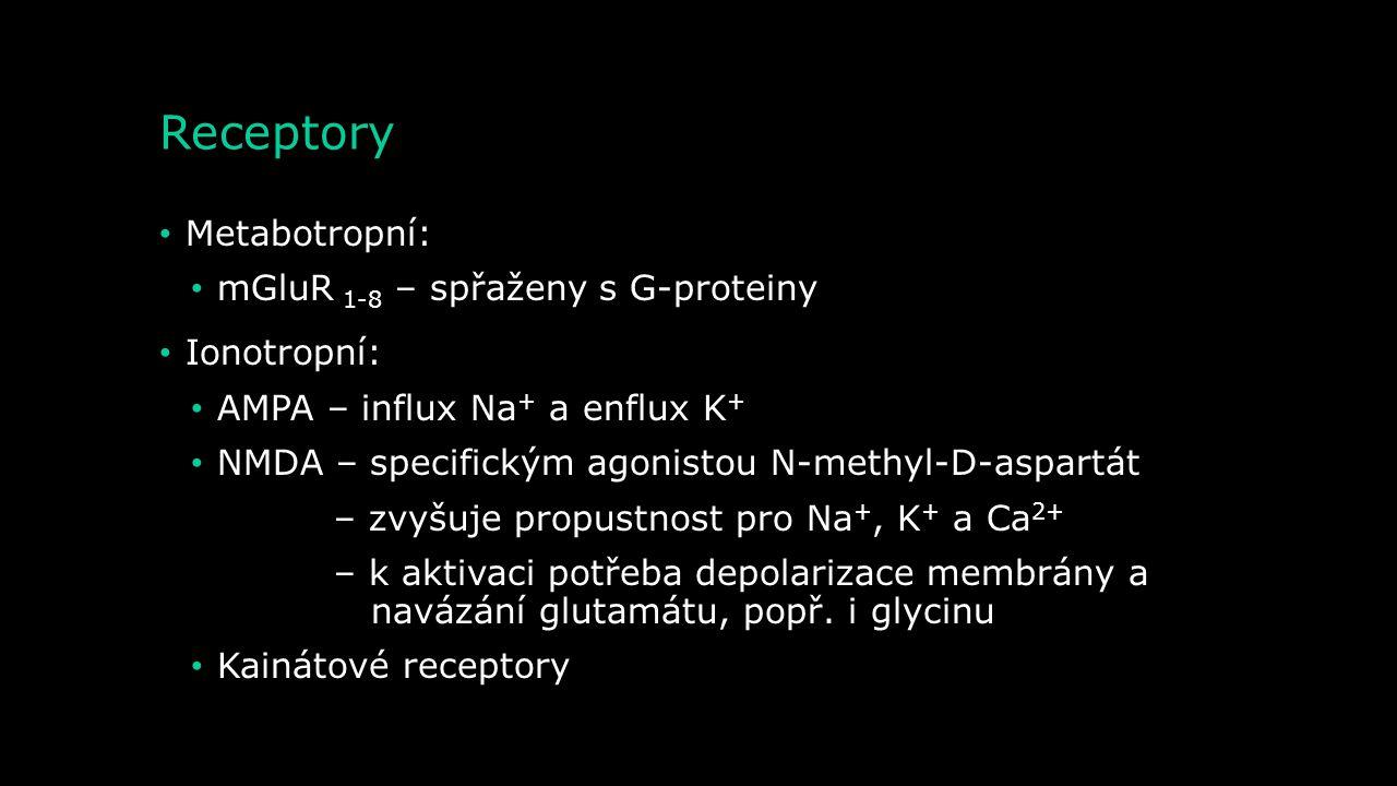 Receptory Metabotropní: mGluR 1-8 – spřaženy s G-proteiny Ionotropní: