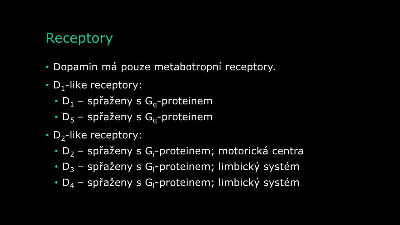 Receptory Dopamin má pouze metabotropní receptory. D1-like receptory: