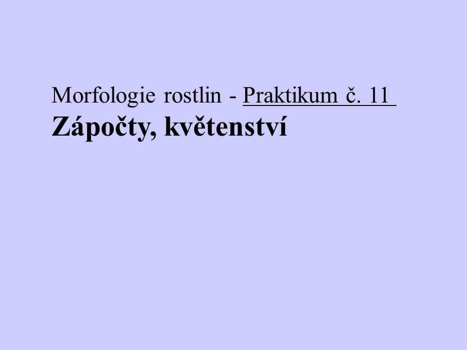 Morfologie rostlin - Praktikum č. 11