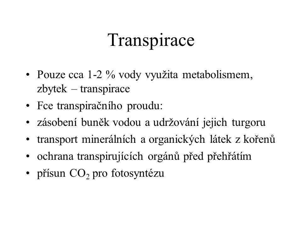 Transpirace Pouze cca 1-2 % vody využita metabolismem, zbytek – transpirace. Fce transpiračního proudu: