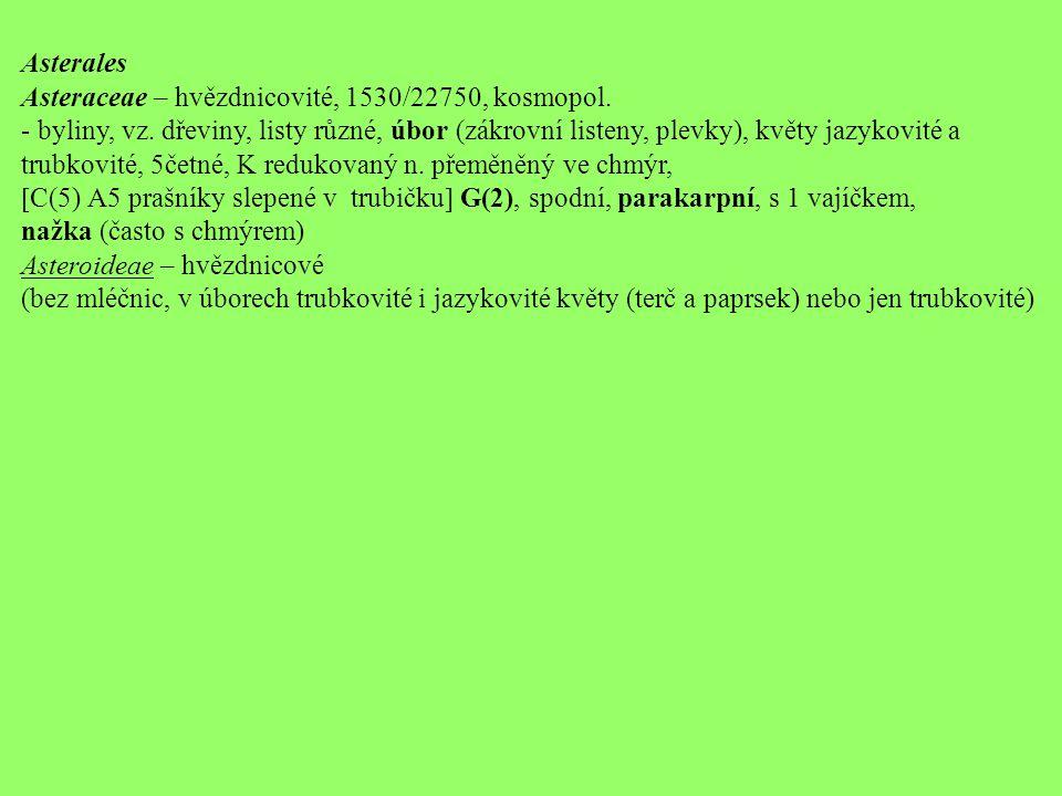 Asterales Asteraceae – hvězdnicovité, 1530/22750, kosmopol. - byliny, vz. dřeviny, listy různé, úbor (zákrovní listeny, plevky), květy jazykovité a.
