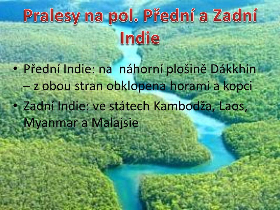 Pralesy na pol. Přední a Zadní Indie
