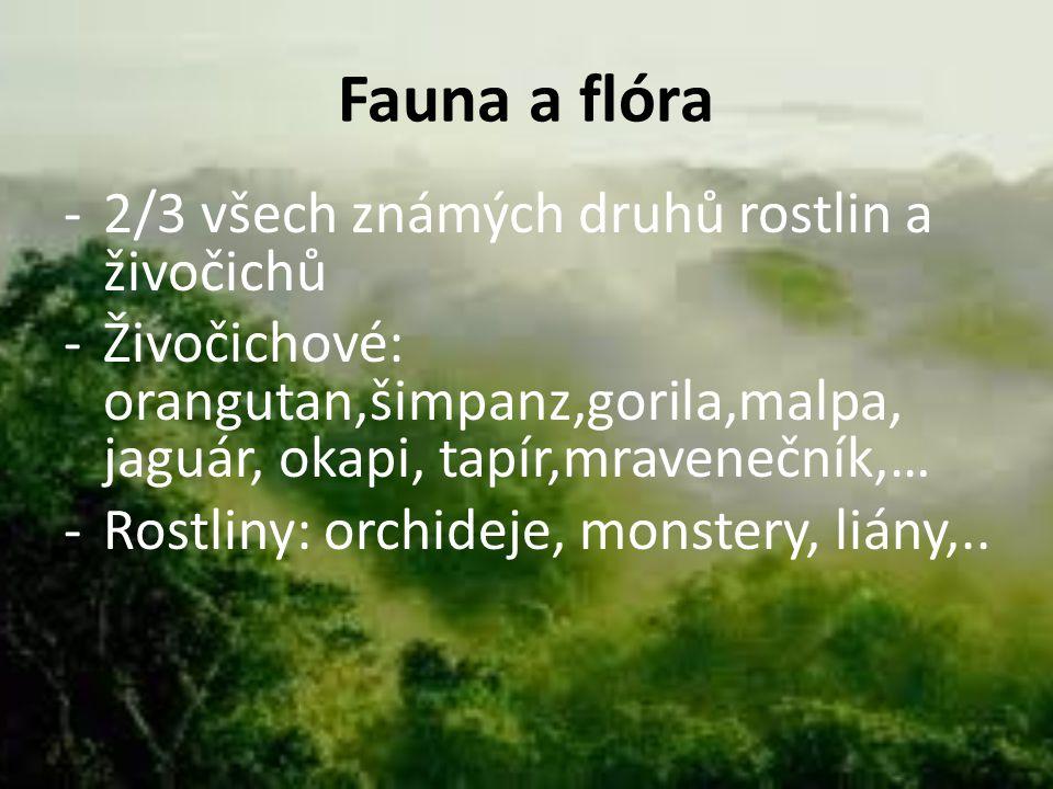 Fauna a flóra 2/3 všech známých druhů rostlin a živočichů