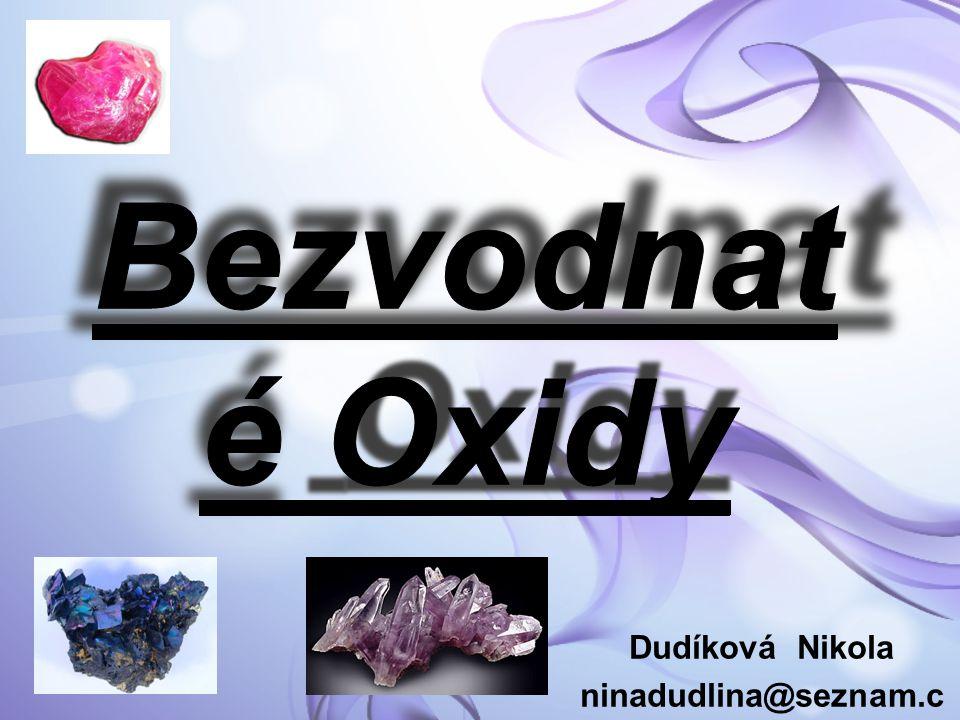 Dudíková Nikola ninadudlina@seznam.cz