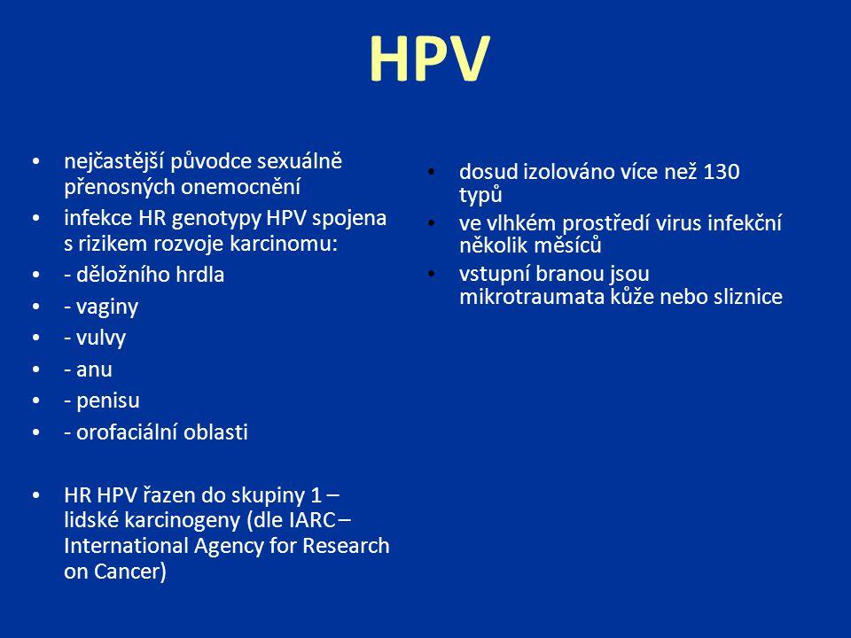 HPV nejčastější původce sexuálně přenosných onemocnění