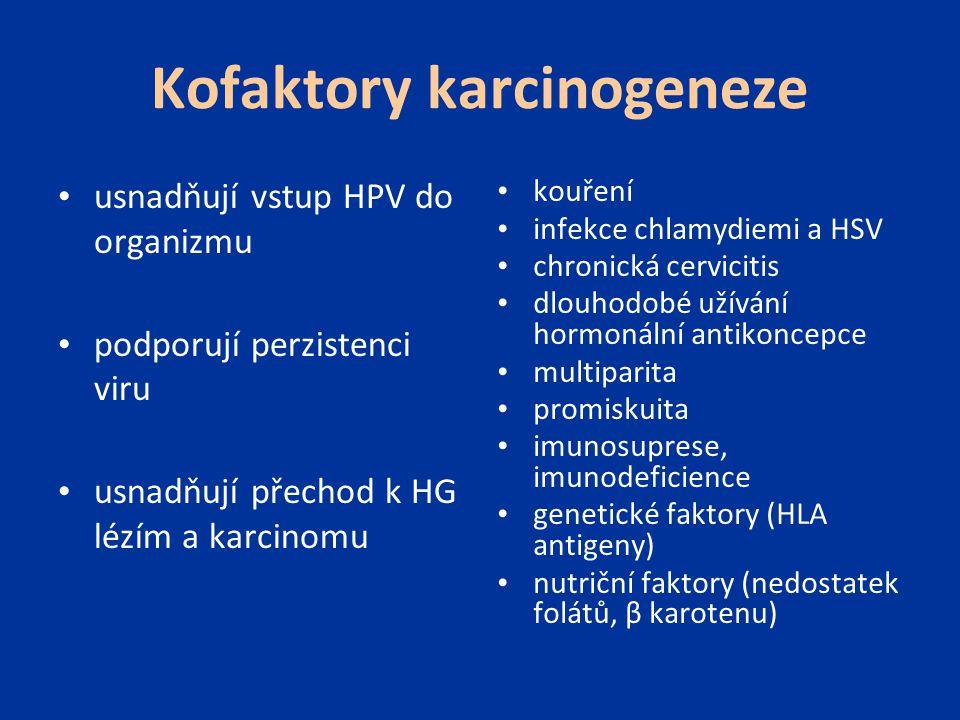 Kofaktory karcinogeneze