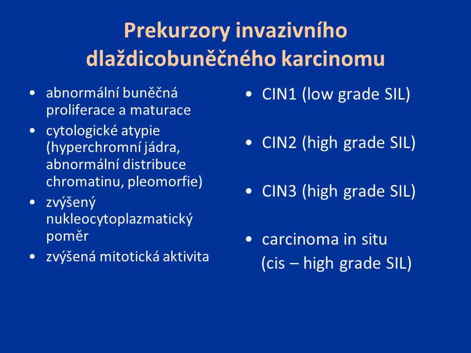 Prekurzory invazivního dlaždicobuněčného karcinomu