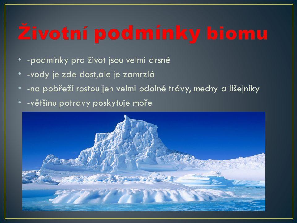 Životní podmínky biomu