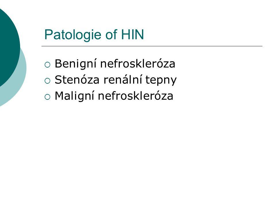 Patologie of HIN Benigní nefroskleróza Stenóza renální tepny