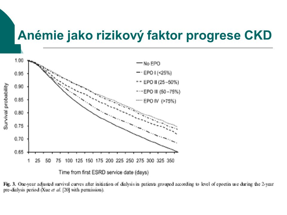 Anémie jako rizikový faktor progrese CKD