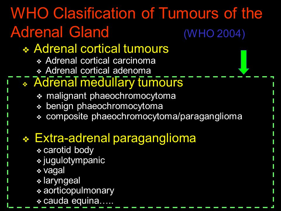 WHO Clasification of Tumours of the Adrenal Gland (WHO 2004)