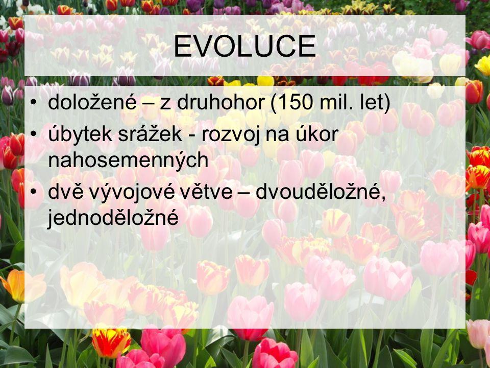 EVOLUCE doložené – z druhohor (150 mil. let)